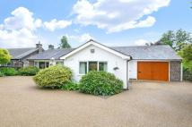 3 bedroom Bungalow in Main Street, Swithland