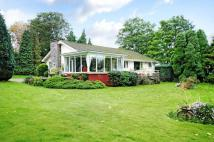 2 bed Detached Bungalow for sale in Leicester Road, Quorn