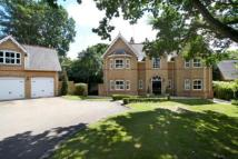 Consort Place Detached house to rent