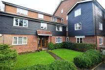 Cedar Court Ground Flat to rent