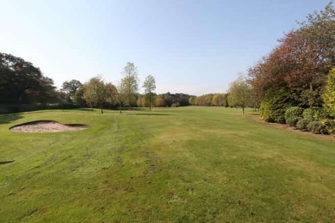 Golf Tee & Green