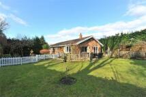 4 bedroom Detached Bungalow in Oak Tree Cottage...