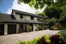 5 bedroom Detached property to rent in Harrowbeer Lane...