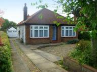3 bed Detached Bungalow in Thunder Lane...