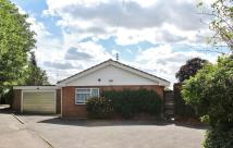 3 bedroom Detached Bungalow to rent in Wargrave Hill, Wargrave...