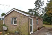 Bungalow to rent in Tockley Road, Burnham...