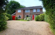 Detached property for sale in Hoppers Way...