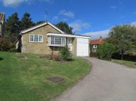 3 bed Detached Bungalow in Willow Rise...