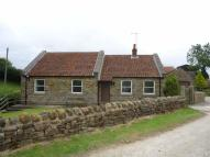 3 bed Detached Bungalow to rent in Harwood Dale Road...