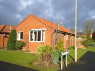 Detached Bungalow for sale in The Limes, Helmsley...