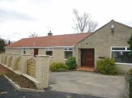 Bungalow to rent in Sawmill Lane, Helmsley...