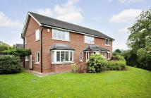 5 bed property to rent in The Elms, Tallarn Green...