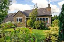 Detached Bungalow in The Gravel, Holt