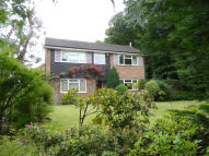 Detached property in Bepton Close, Midhurst...