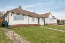 Detached Bungalow to rent in Winton Avenue, Saltdean...