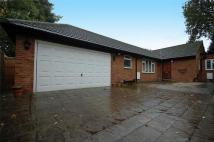3 bed Detached Bungalow in Buckingham Road, Hampton