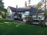 Cottage to rent in Henham...