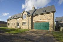 4 bed new house to rent in Ellingham Hall, Chathill...