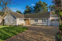 Detached Bungalow for sale in Vale Close, Lower Bourne...