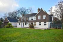 Detached house for sale in Nutshell Lane, Farnham