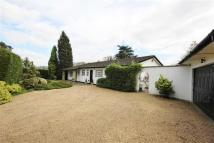 3 bedroom Detached Bungalow in Star Hill, Churt, Farnham