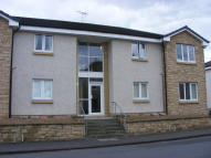 Flat to rent in Thornbridge Court...