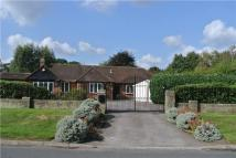 5 bed Bungalow for sale in Wymers Wood Road...