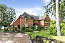 5 bed Detached home in Princess Grove...