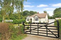 Harlow Common Bungalow for sale