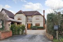new home for sale in Chelmsford Road...