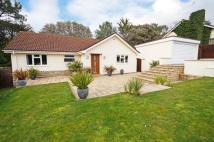 3 bedroom Bungalow in Avalon, Lilliput, Poole...