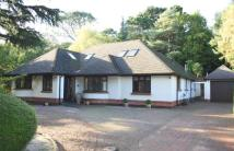4 bed Bungalow for sale in Lindsay Road, Poole...