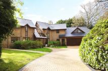 5 bedroom Detached property in Western Road...