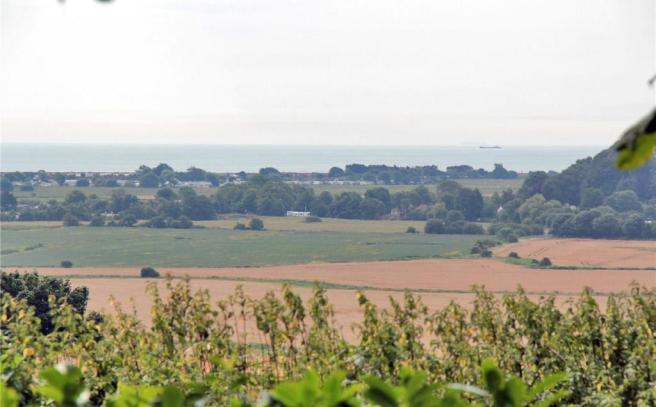View Over Hedge