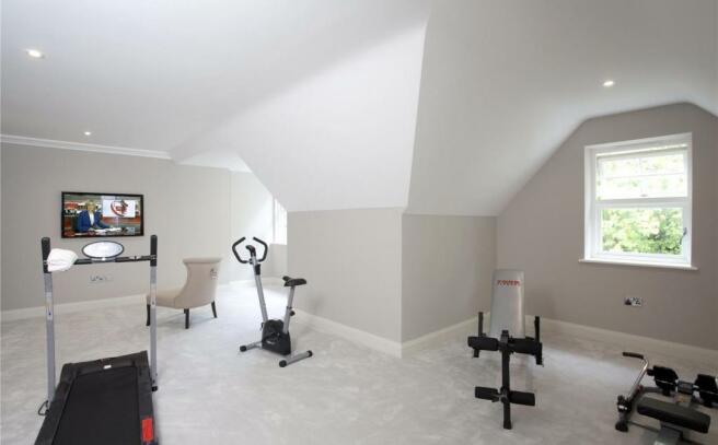 Play Room / Gym