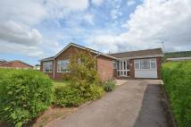 Detached Bungalow in Ross-On-Wye