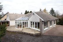 Springbank Detached house for sale