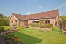 3 bed Detached Bungalow for sale in Hatching Green Close...