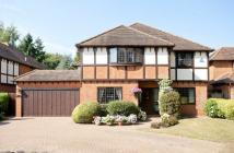 Detached house for sale in St. Andrews Road...