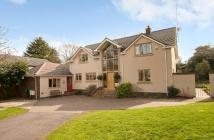 Detached home for sale in Peppard Lane...