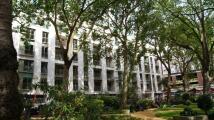Ebury Street new Apartment for sale