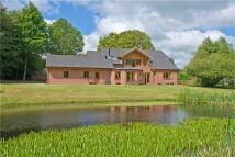 4 bedroom new property for sale in Hoe, Dereham, Norfolk...