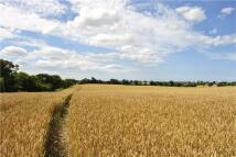 Trunch Land for sale