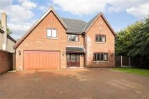 5 bedroom Detached house in The Street, Brundall...