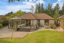 Detached house in Brahan Seer, Drum...