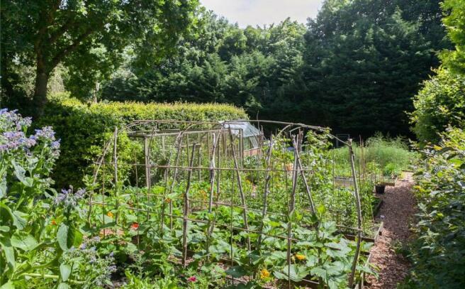 Vegetable Garden