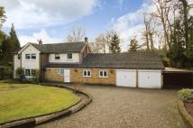 4 bed Detached house for sale in Dukes Covert, Bagshot...