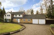 Dukes Covert Detached property for sale