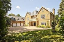 7 bed Detached home in Hancocks Mount, Ascot...