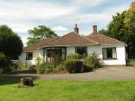 Detached Bungalow for sale in Southmead, Sidcot Lane...